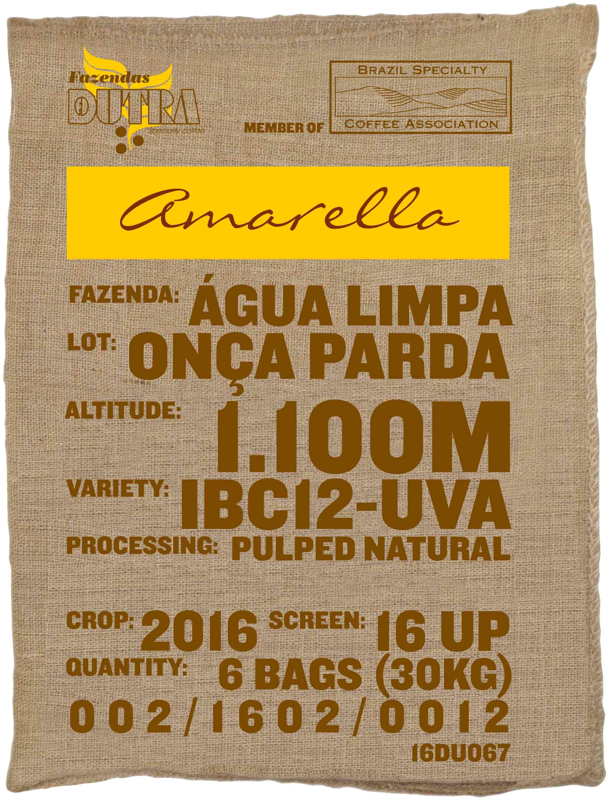 Ein Rohkaffeesack amarella Parzellenkaffee Varietät IBC12-UVA. Fazendas Dutra Lot Onca Parda.